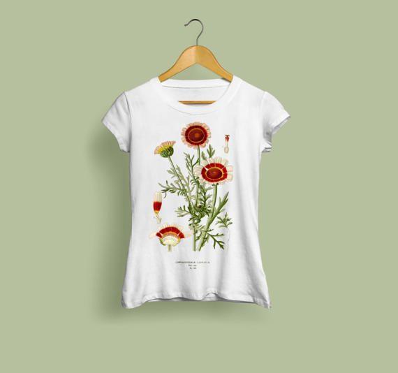Chrysanthemum Carinatum Ladies T Shirt Botanical Illustration Botanical Art Botany Flower Tshirt Vintage Style Art Print S M L Xl Xxl Vintage Style Art T Shirts For Women Botanical Illustration Vintage
