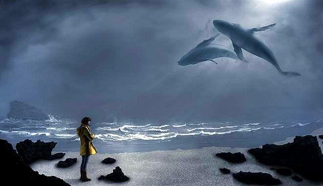 ballena en el cielo에 대한 이미지 검색결과