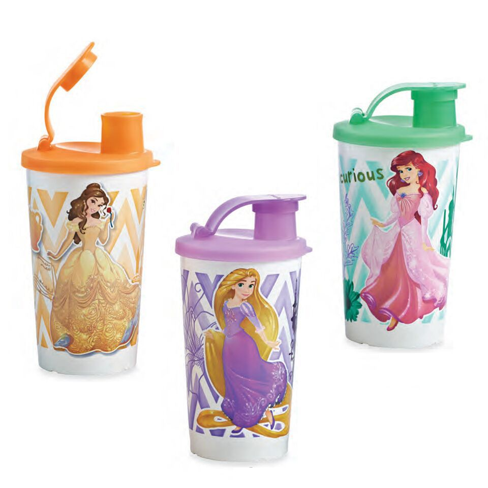 Are your kids Disney fans? Pick up one of these Disney Princess ...