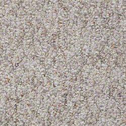 Loft & Bed 3 Carpet: Legacy Park Rocky Road