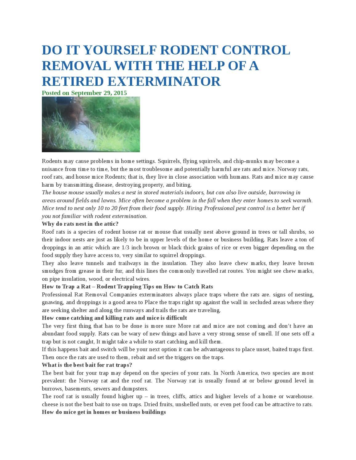 Do it yourself rodent control removal with the help of a