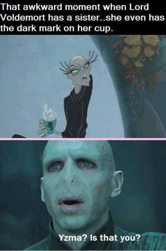 Harry Potter 25 Memes That Show That Voldemort Makes No Sense In 2021 Harry Potter Memes Hilarious Voldemort Lord Voldemort