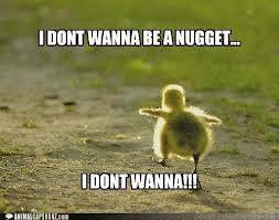 Chicken nugget? Run!!