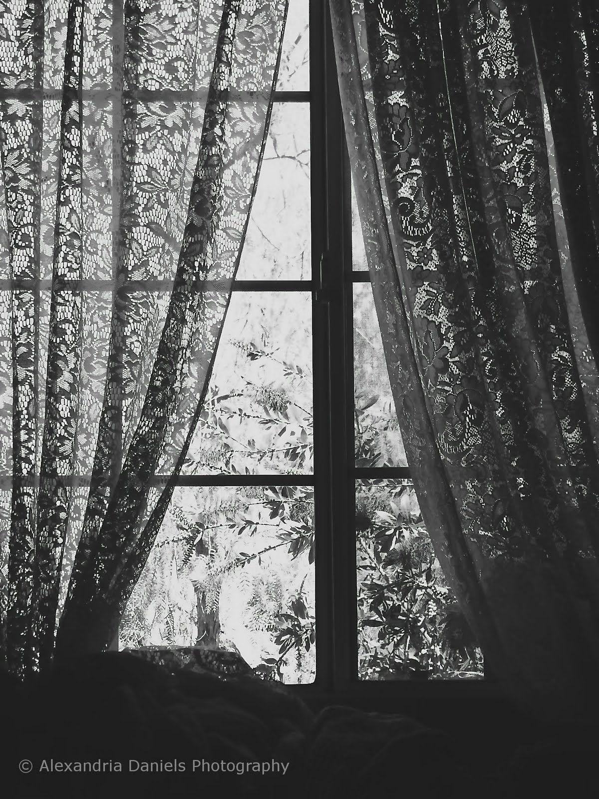 Black Lace Curtains Remind Me Of Stevie Nicks Xoxo CurtainsValanceBlack White HalloweenLiving Room
