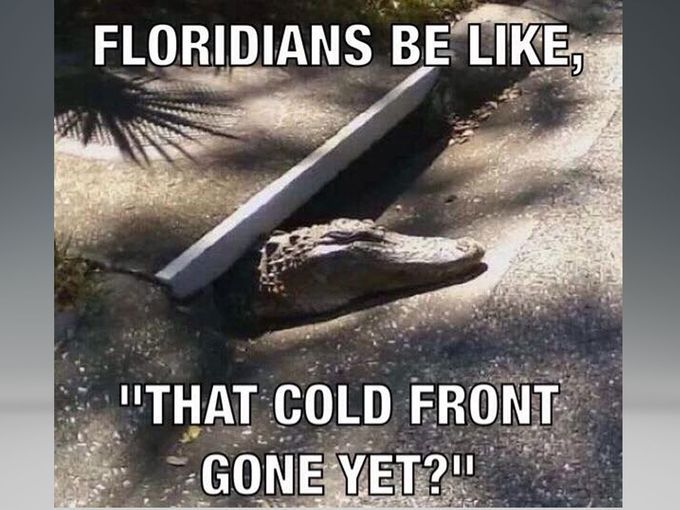 Funny Memes For Winter : Is the cold front gone yet? #florida #freightcenter florida