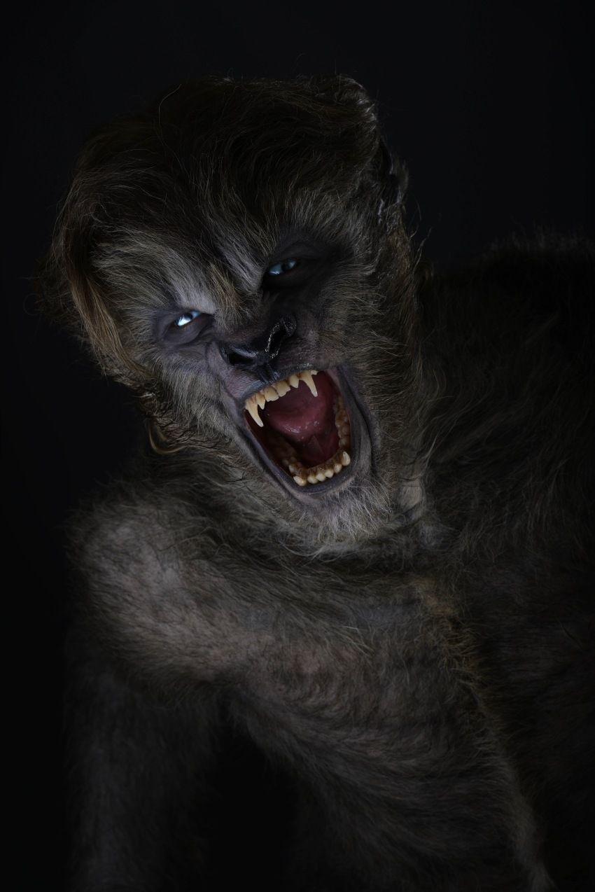 Vampires Wolves