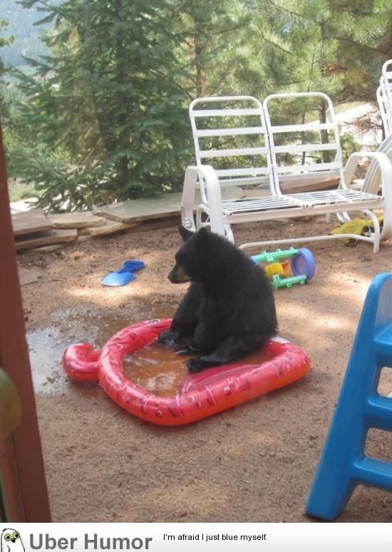 Sad bear popped a hole in my friend's pool :