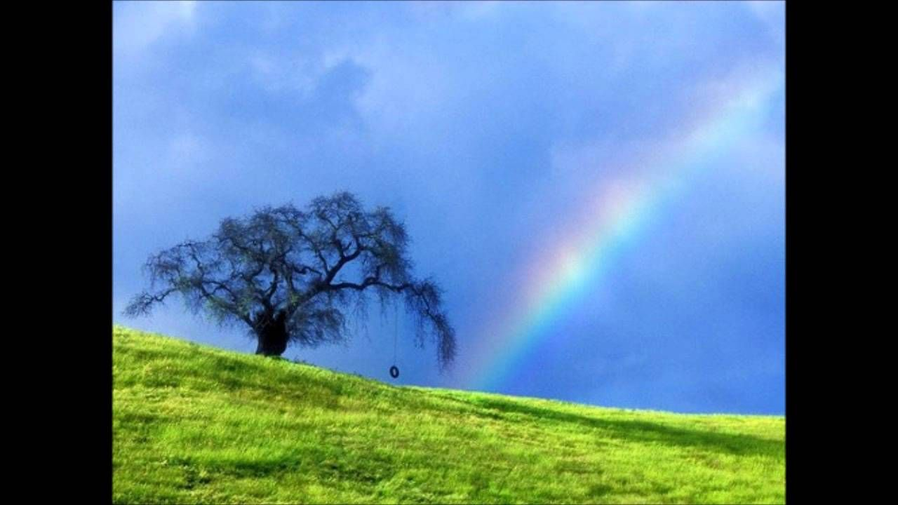 Ashley hutchings rainbow over the hill over the hill