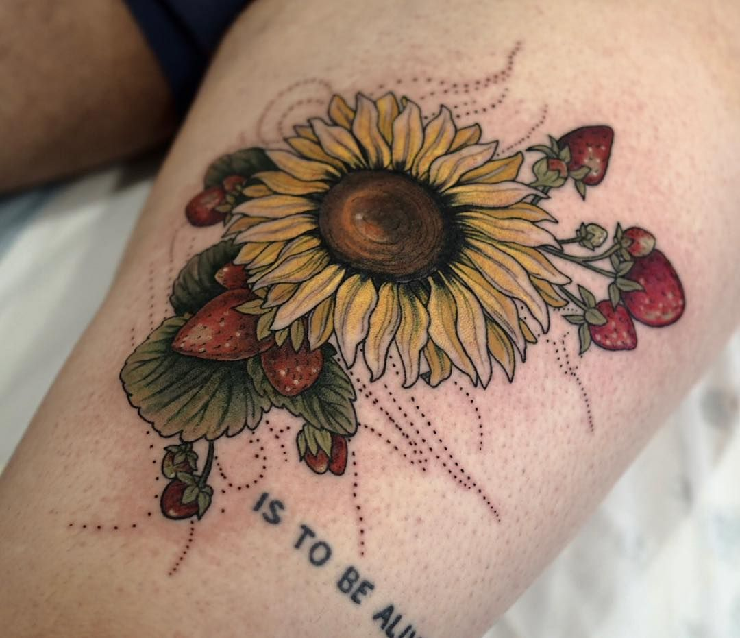 9bb87f811 Sunflower, strawberries and isobars for Josh! Thanks Maaate #Regram via  @sophiabaughan