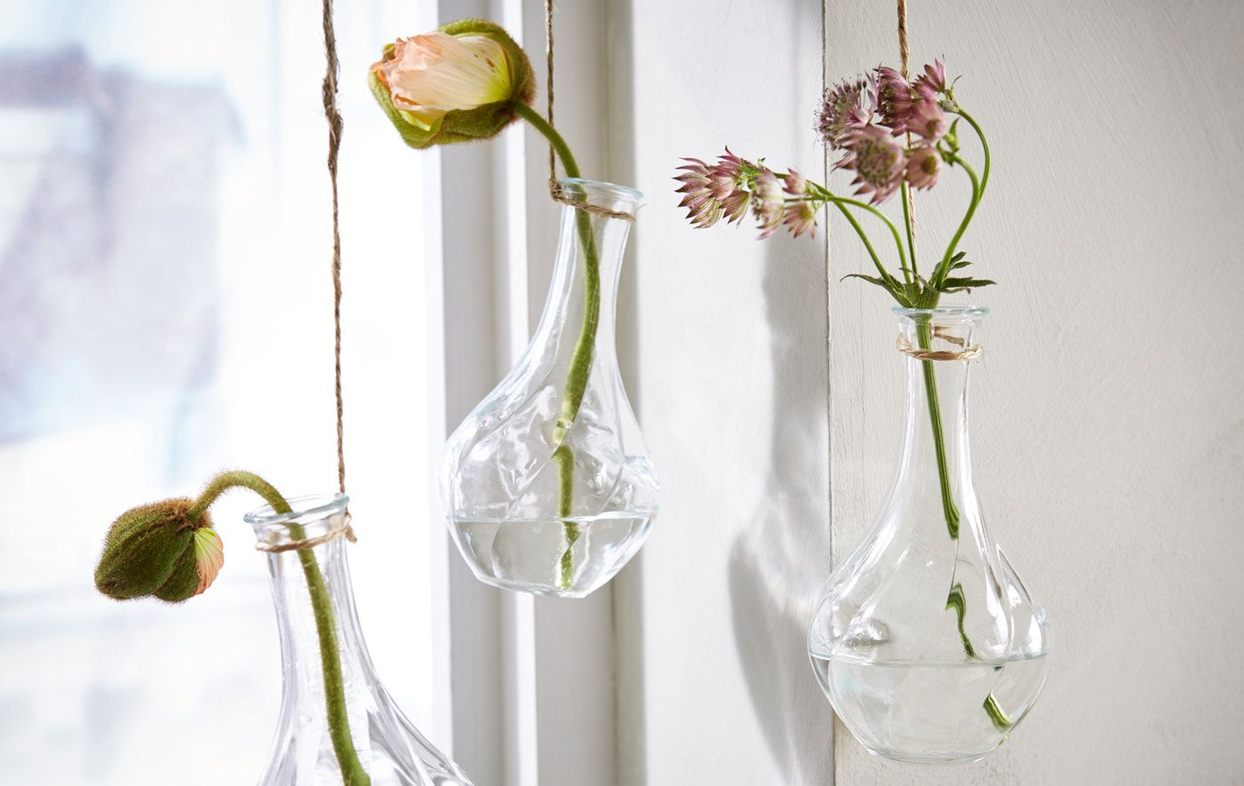 Photo of Sommerpflanzen für drinnen