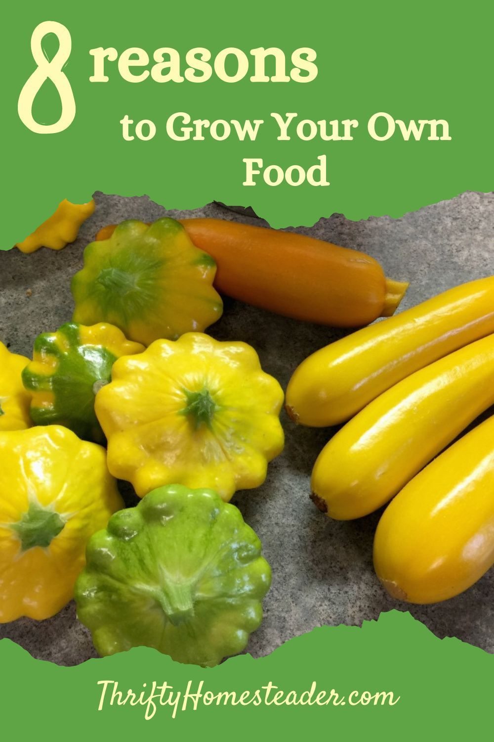 8 Reasons to Grow Your Own Food The Thrifty Homesteader