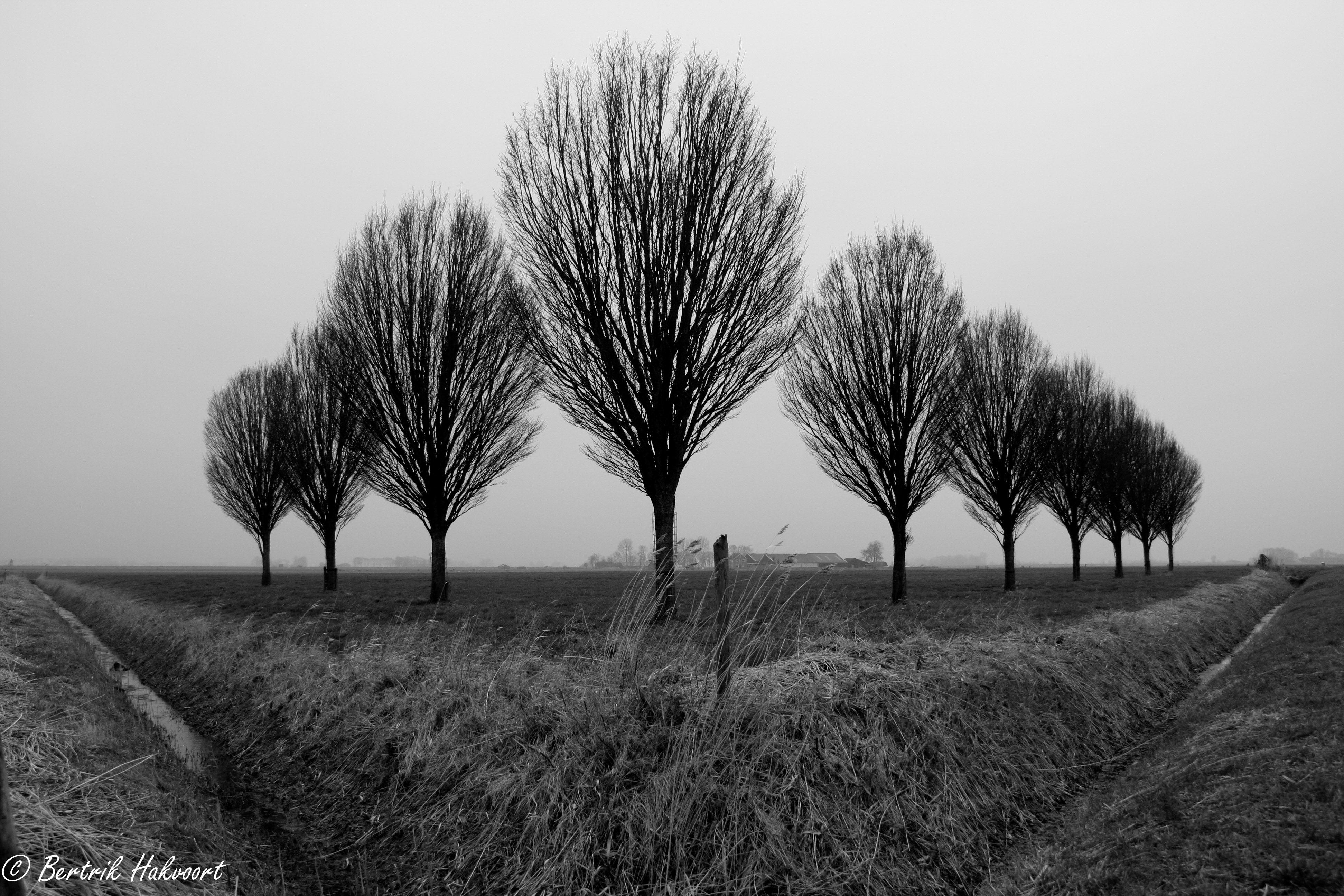 #symmetrie is niet altijd nodig om evenwichtig te zijn.