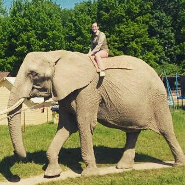 Wonderbaar Sexy Woman riding on an Elephant in the Zoo/Sexy Frau reiten auf NK-85
