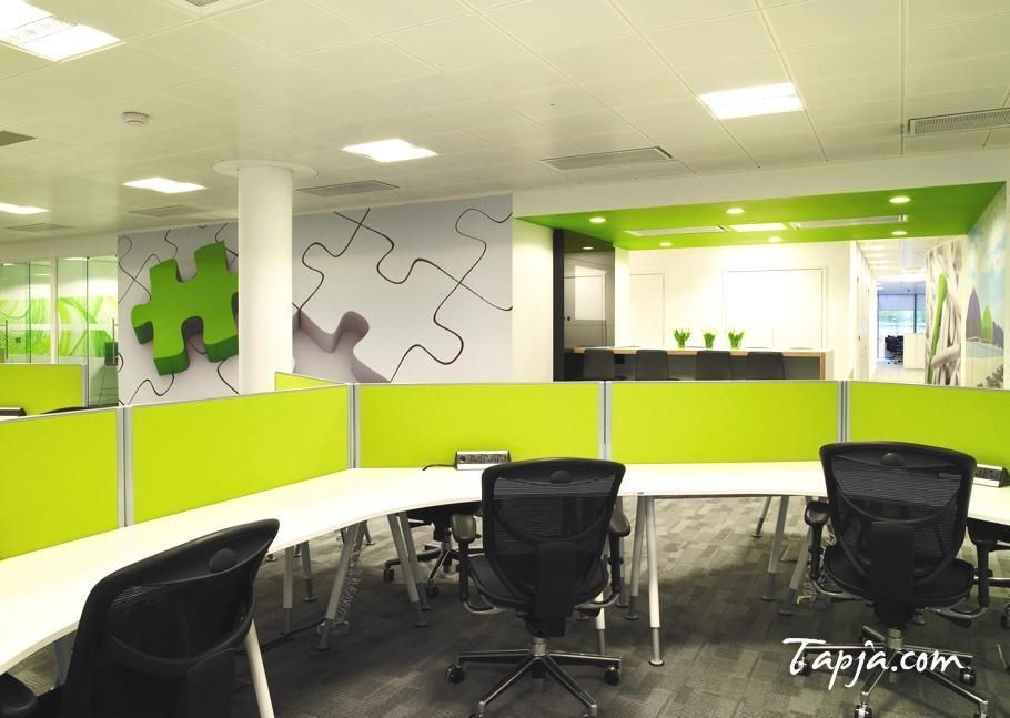 Delightful White Green Wall Colors For Modern Office ...