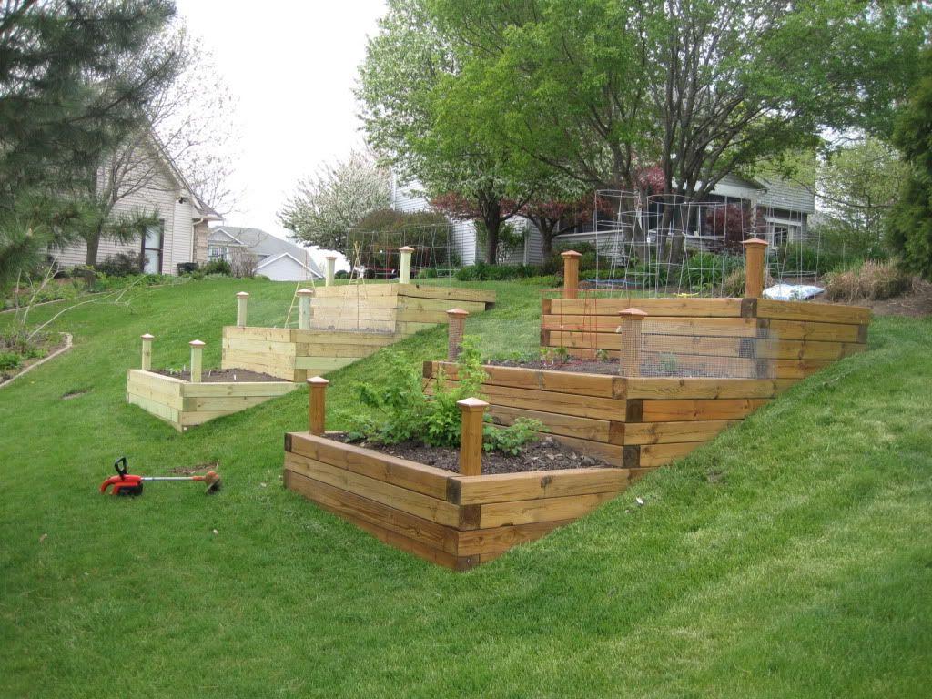 hillside vegetable garden   Raised bed garden. - Page 2 ...