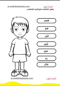 ورقة عمل اجزاء الجسم للاطفال رياض الأطفال أوراق عمل للأطفال شيت زون Comics