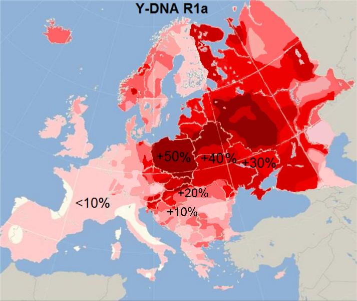 Cim Tmavsi Cervena Barva Tim Vetsi Je Dnes V Populaci Zastoupeni Slovanske Dna Haploskupiny R1a Cervena A Barvy