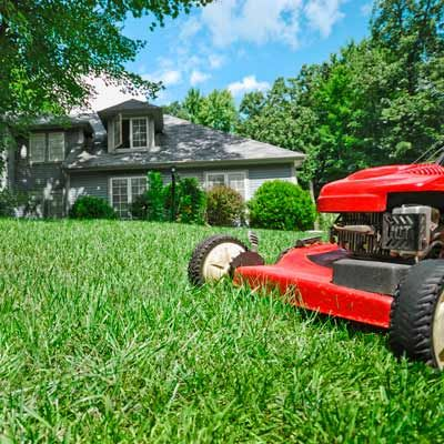 Best 25 lawn service ideas on pinterest lawn mowing for Landscaping services