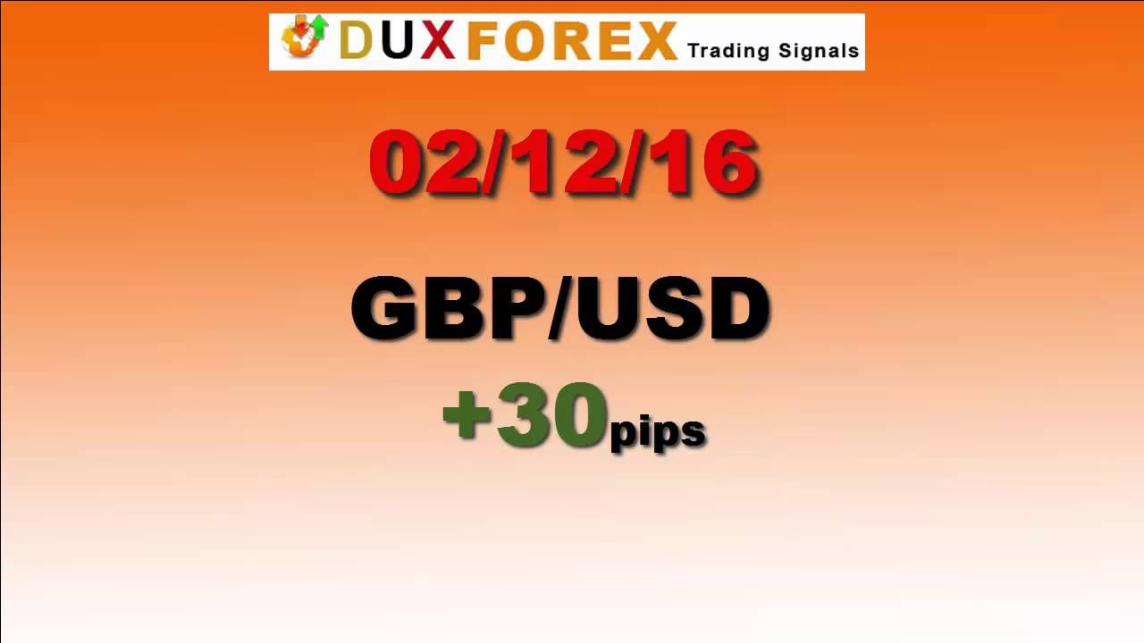 Daily Forex Profits Performance 02/12/16 Dux Forex