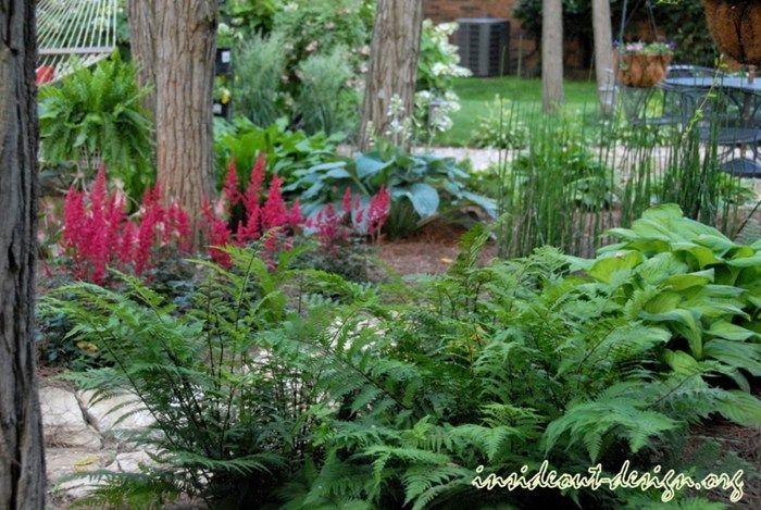 Suburban Courtyard Near Lexington Landscaping Network Woodland Garden Shade Garden Design Shade Garden