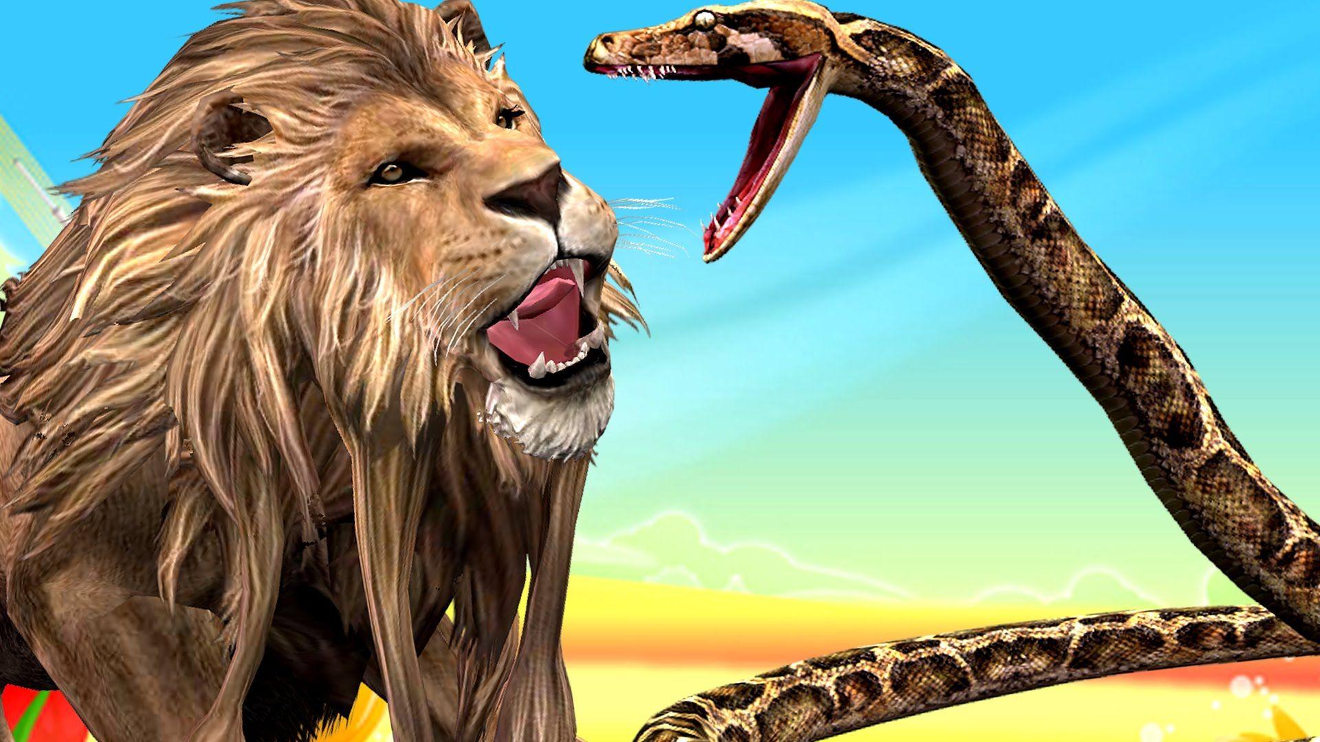 Jungle Lion Vs Giant Python Animal Attacks Spiderman