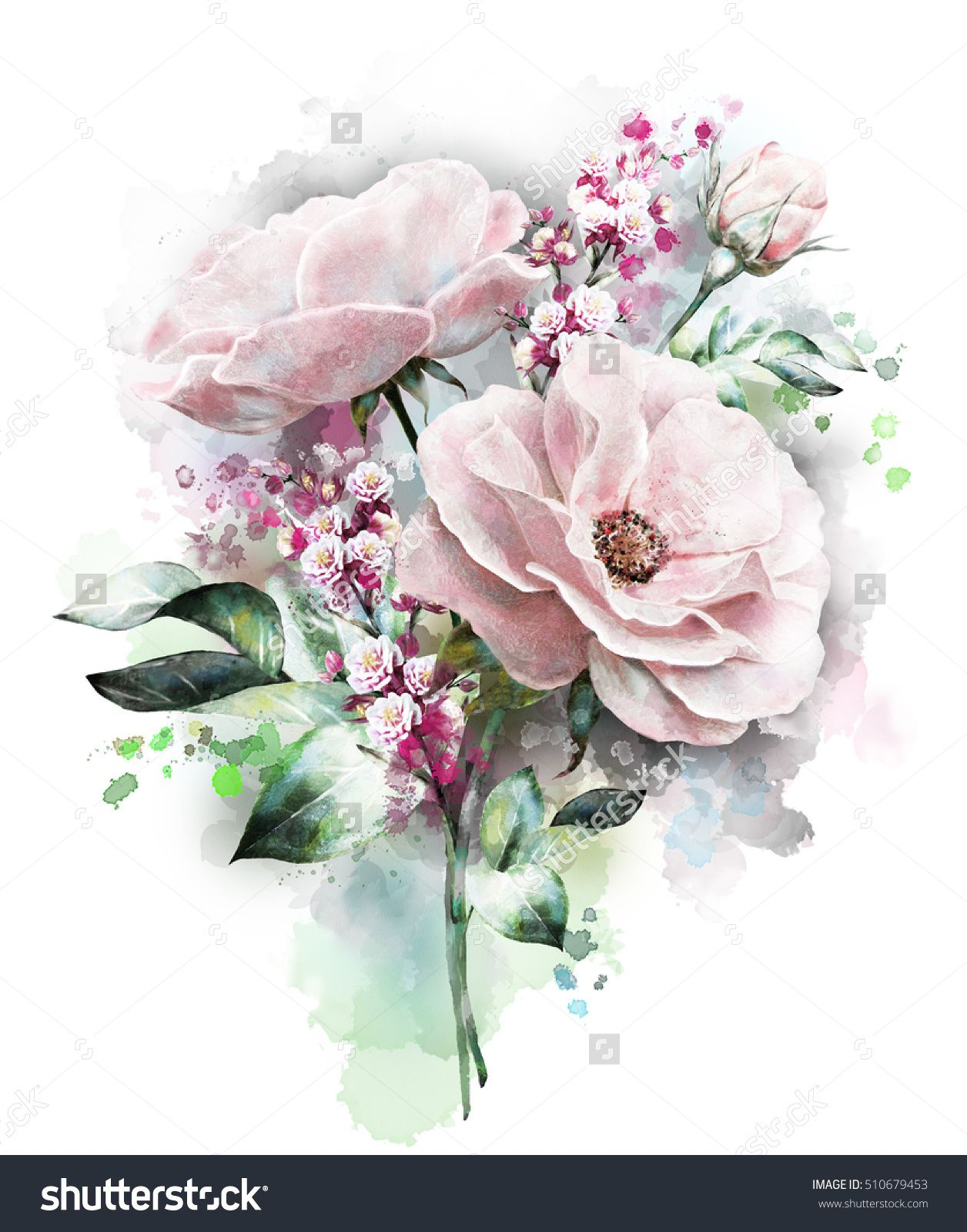 Watercolor Flowers Floral Illustration, Flower In Pastel Colors, Pink Rose