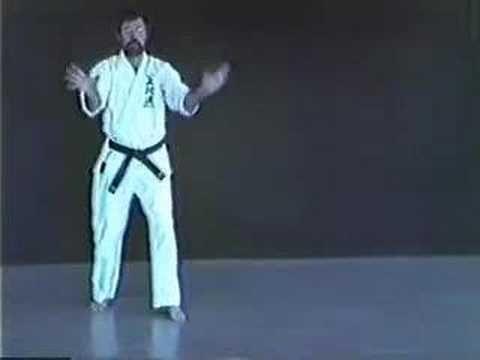 Seichin Kata Uechi Ryu Karate With Images Kata Karate Kata