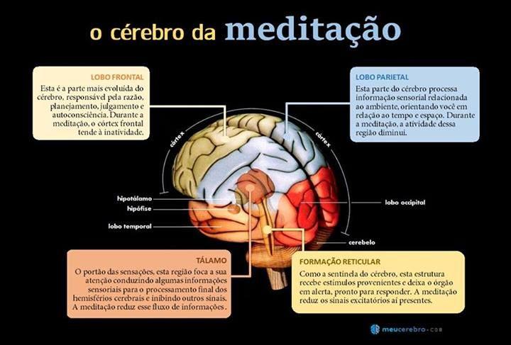 A MEDITAÇÃO 'mindfulness', uma maneira de focar no presente sem julgamentos, tem benefícios comprovados para a saúde. É uma boa maneira de sintonizar as funções cerebrais e prepará-lo para ocasiões de grande exigência intelectual.