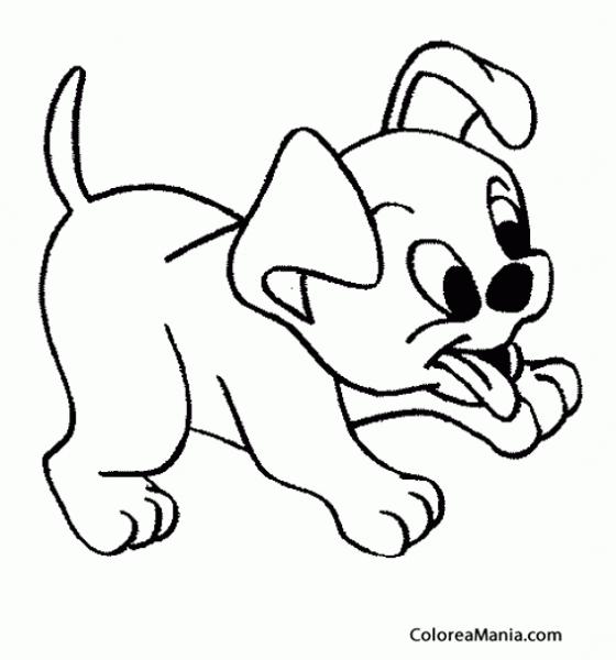 Perritos Cachorros Para Colorear Perros Para Dibujar Faciles Perritos Para Dibujar Dibujos Para Pintar Faciles