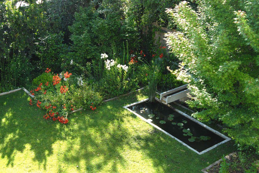 Jardín del sur de Chile, azaleas, rododendros, etc | Jardin ...