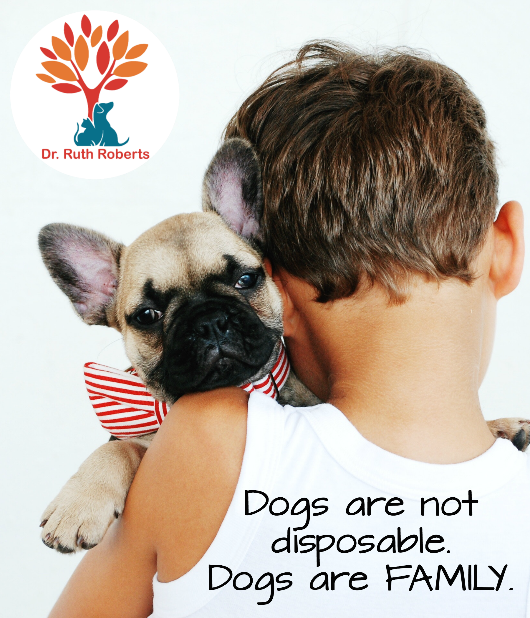 Dogs Are Not Disposable Dogs Are Family Love Quotes Dogs Animal Hospital Dog Days