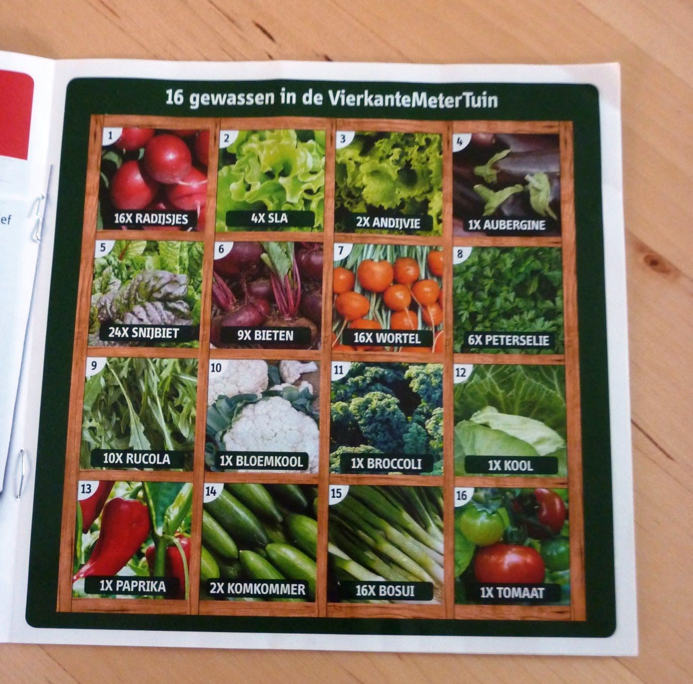 16 gewassen in de vierkante meter tuin grow your own food pinterest square foot gardening - Square meter vegetable garden ...