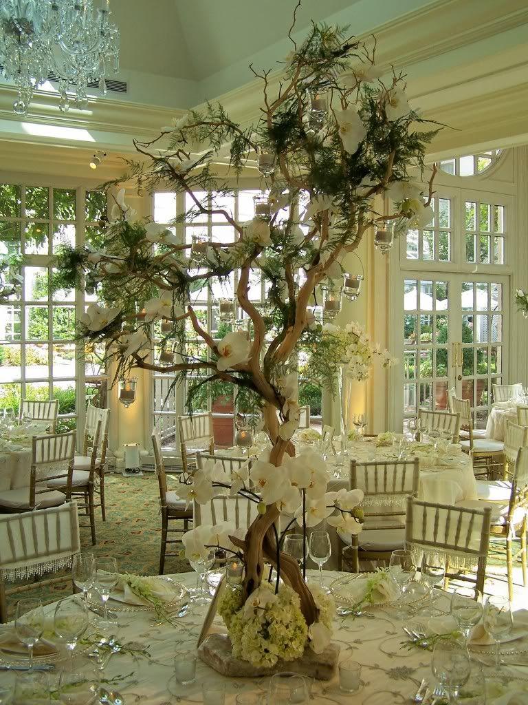Tree Centerpiece Our Wedding Pinterest Tree Centerpieces