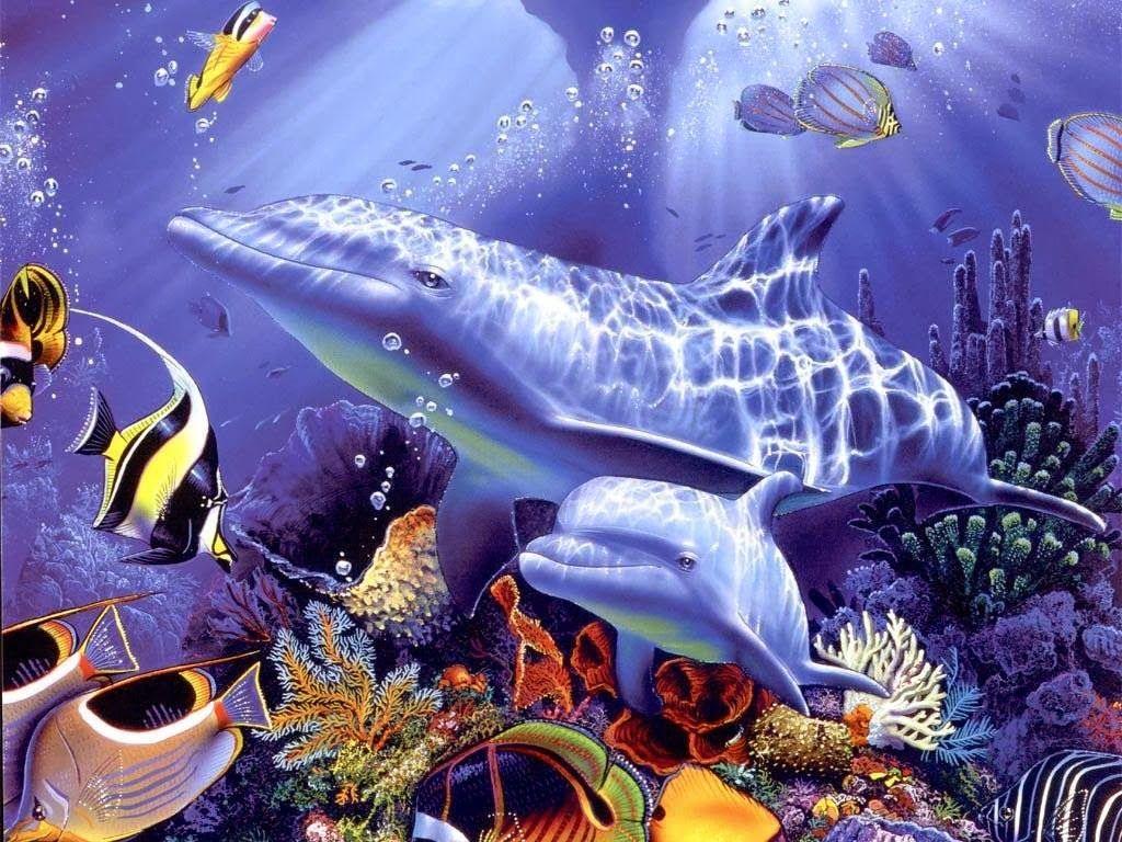 Foto Pemandangan Bawah Laut Terindah Di Dunia 2014