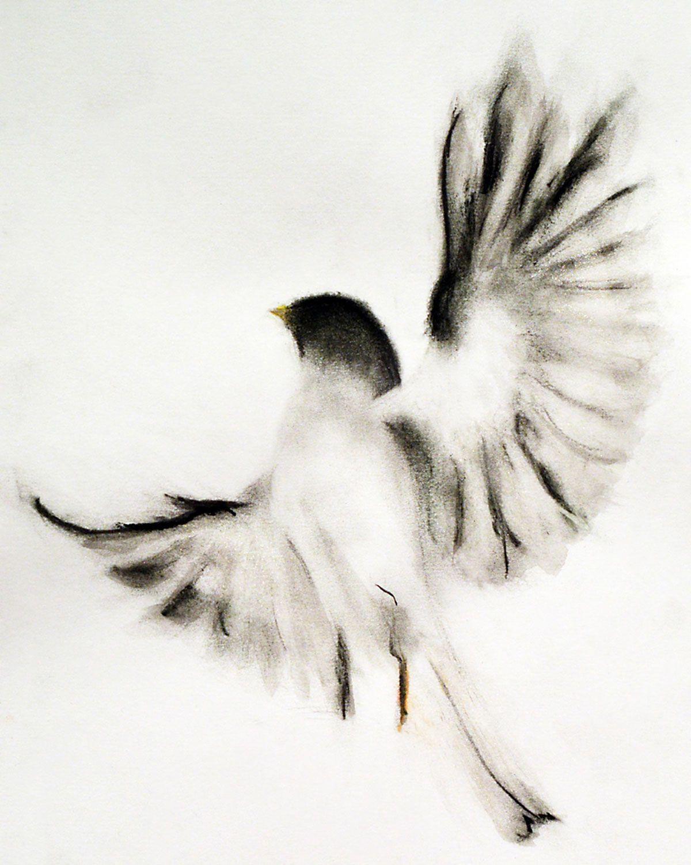 Reddit Pics Charcoal Art Bird Drawings Drawings