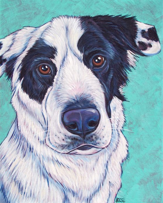 Border Collie Great Pyrenees Mixed Breed Dog Custom Pet Portrait Memorial Painting In Acrylic Paint On 8 X Pet Portraits Pet Portrait Painting Animal Drawings
