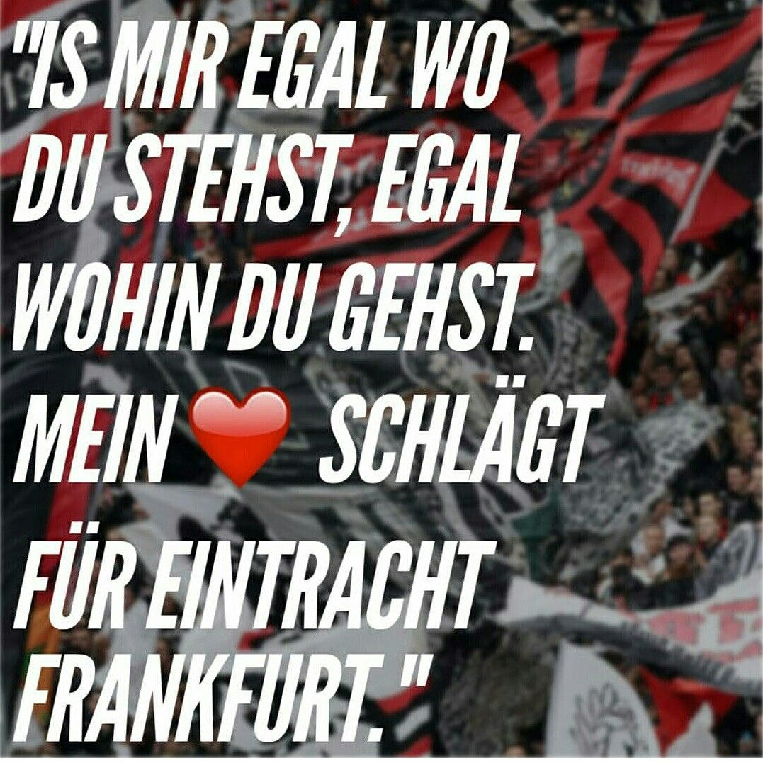 1000+ images about eintracht frankfurt on pinterest | football