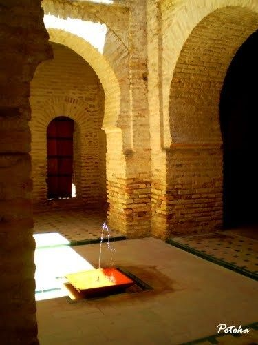 #Cádiz #Jerez de la Frontera - Alcazaba GPS 36.682311, -6.133583  Foto cortesía de Marije Aguilló El Alcázar de Jerez de la Frontera, (Andalucía, España) es un conjunto de edificaciones fortificadas de origen almohade (Siglo XII), al que posteriormente se añadieron edificaciones barrocas palaciegas, y que es uno de los principales monumentos de la ciudad; Se encuentra en el ángulo suroeste de la muralla que rodeaba a la ciudad, junto a la Alameda Vieja.