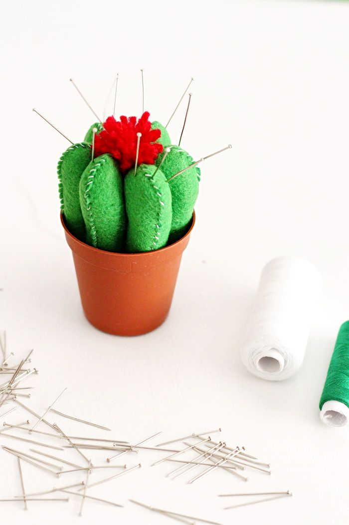 DIY pincushion cactus