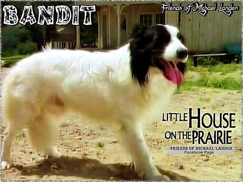 Bandit Little House Famous Dogs Michael Landon