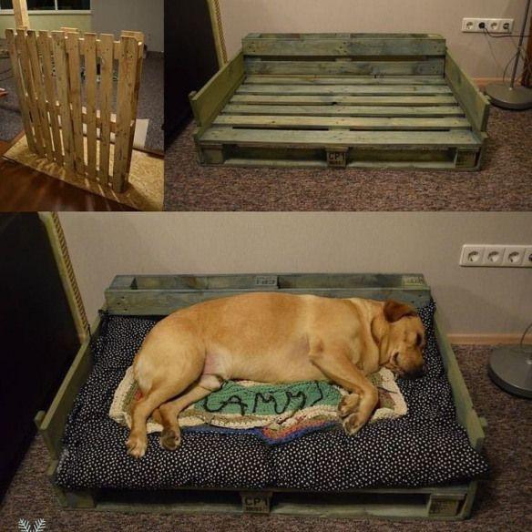 Wonderful Screen Fantastic Photos raised dog kennel Ideas ...