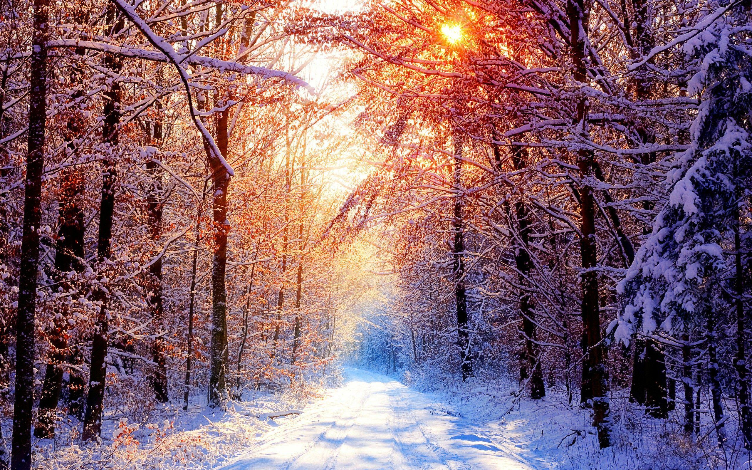 Winter Desktop Wallpaper Landschafts Tapete Winter Hintergrunde Winter Szenen