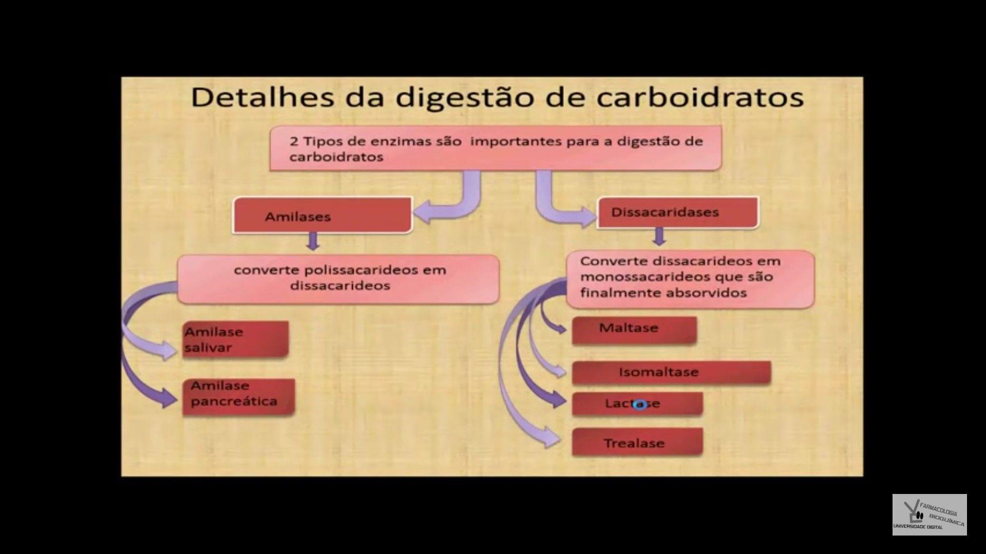 Advertencia: el poder del metabolismo españa