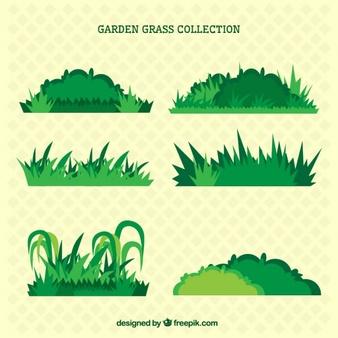 Arbusto Vectores Fotos De Stock Y Psd Gratis Dibujo De Jardin Arbustos De Jardin Arbusto Dibujo