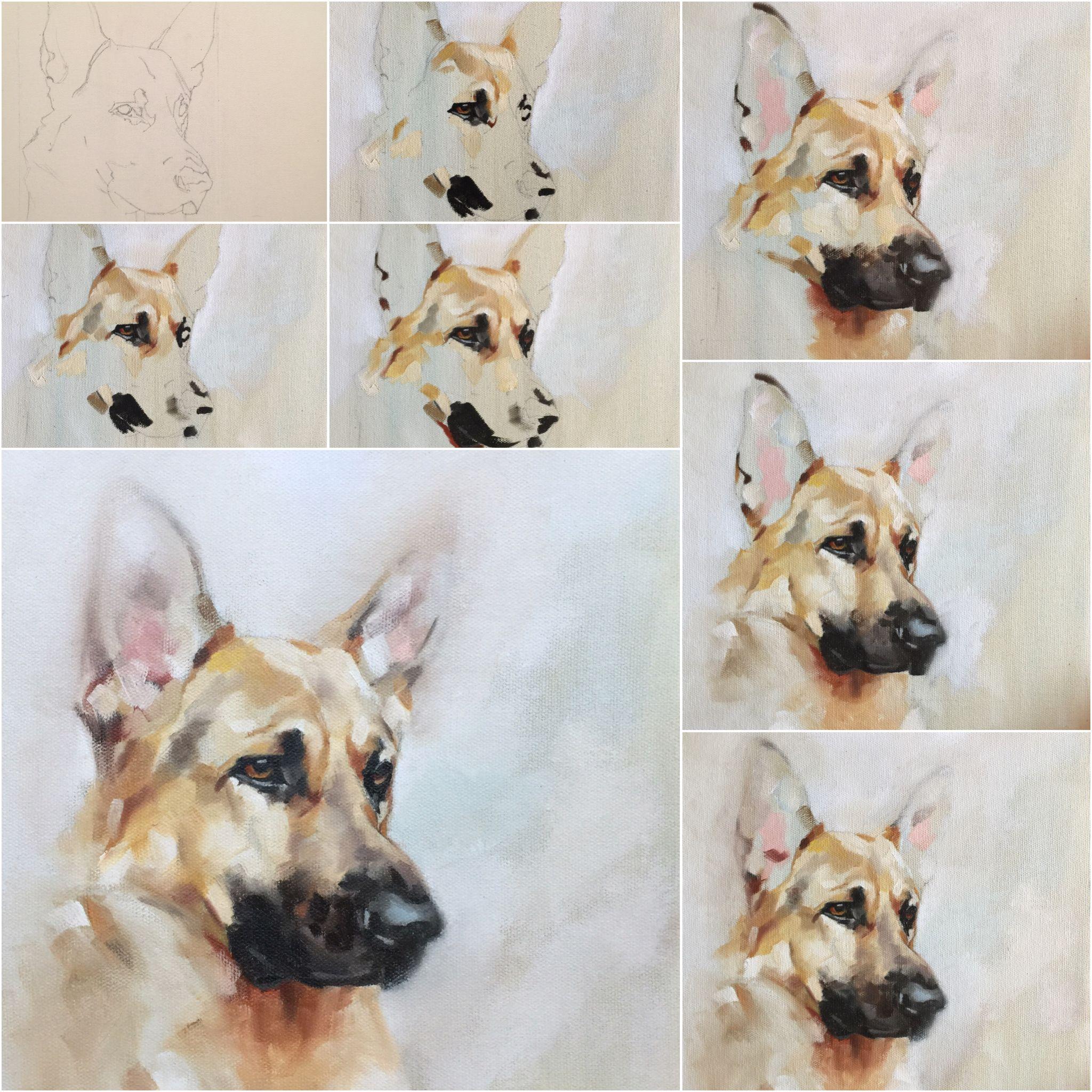 Boyd Step By Step By Julie Brunn Watercolor Paintings Tutorials