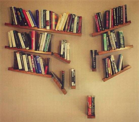 Neat Bookshelf Idea