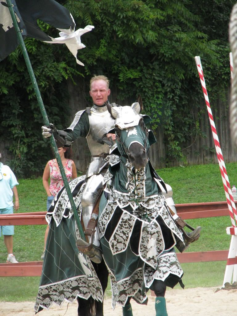 pictures of horse caparisons, what are you wearing?