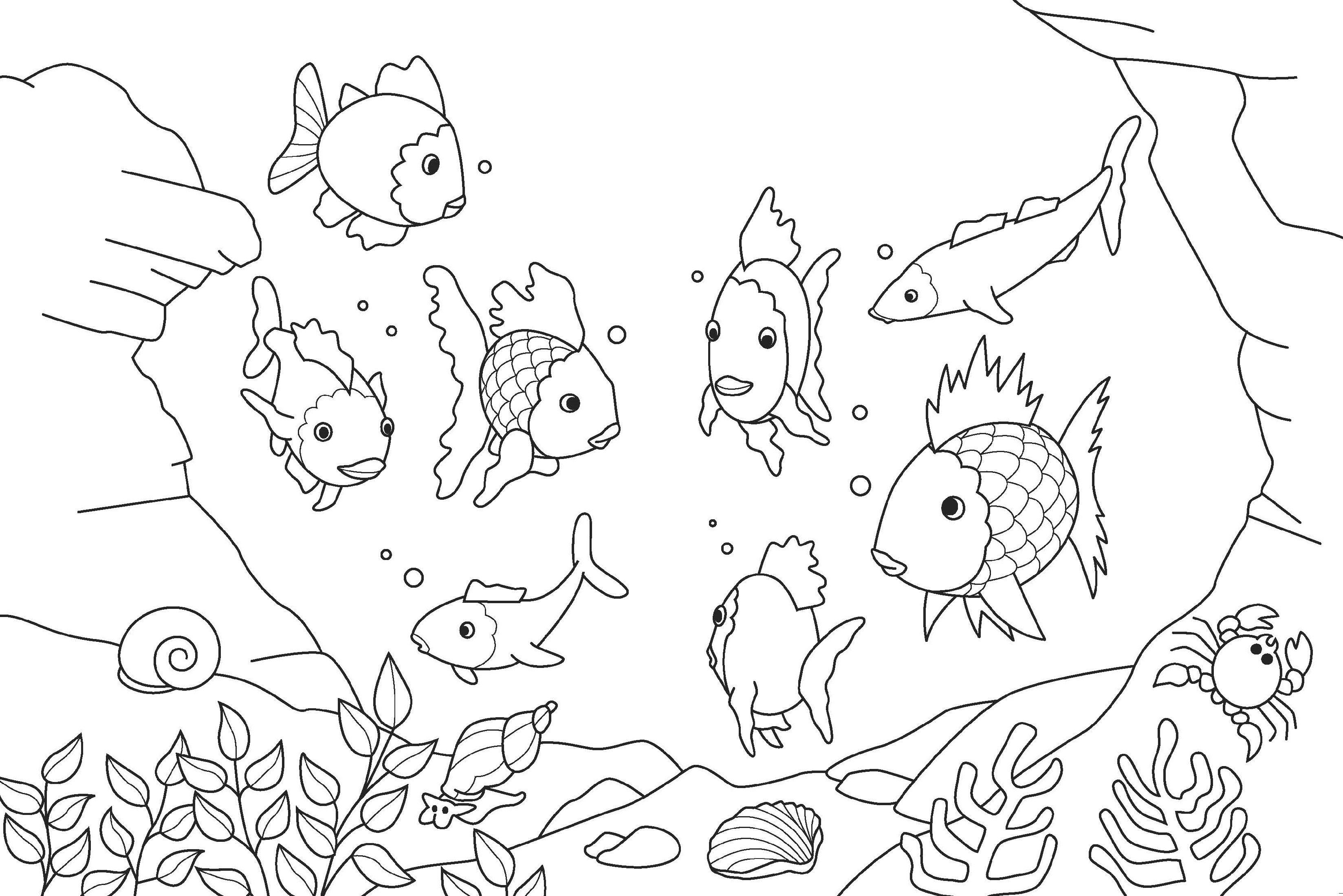 Rainbow Fish Coloring Printable for Kindergarten