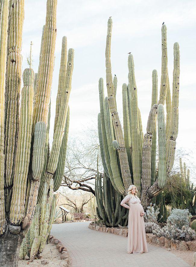 Sunrise Maternity at Desert Botanical Gardens (With images