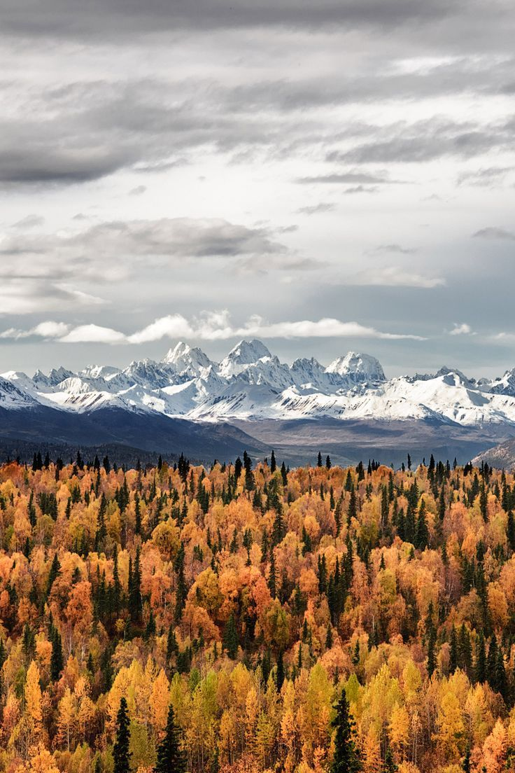 17 Stunning Road Trip Destinations for the Best Fall Foliage in the USA